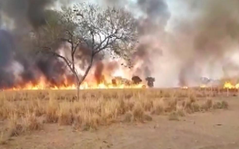 Incêndios florestais em Oliveira dos Brejinhos e cidades do Oeste preocupam brigadistas e bombeiros